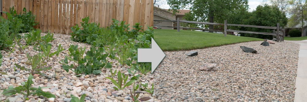 Weed Killer in Rock / Mulch Beds: before and after
