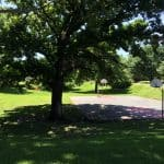 6 Tips For Maintaining Shaded Lawn Areas in Denver